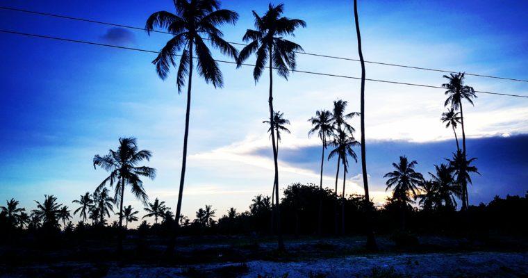 PIERWSZE KROKI W TANZANII