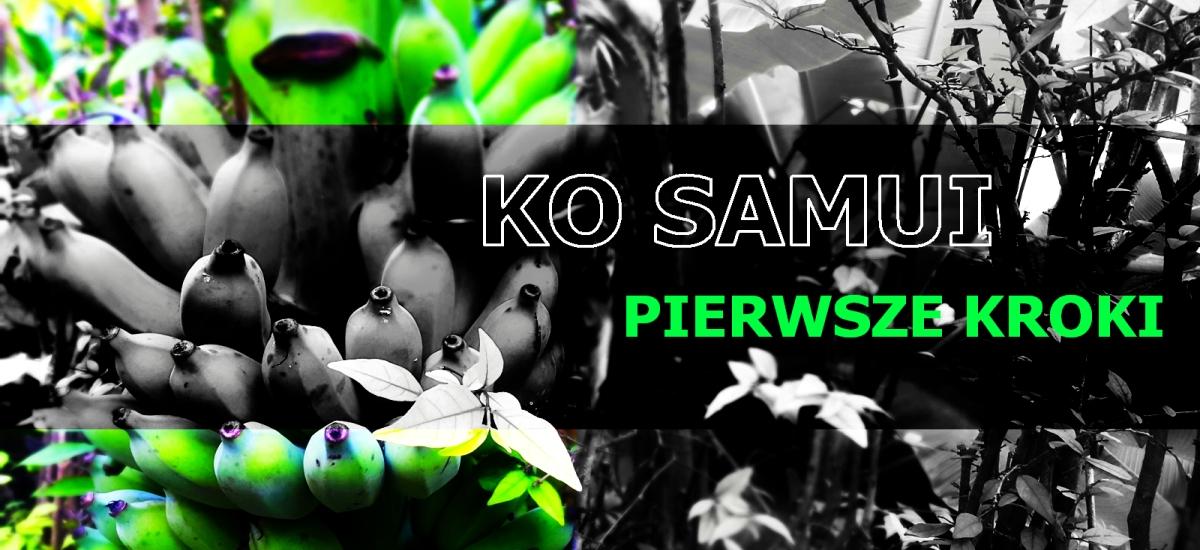 Koh Samui. Pierwsze kroki na wyspie kwiatów